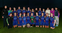 Murroe/Boher Senior B Co Champions