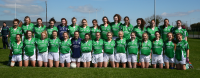 Limerick Intermediate Team 2015