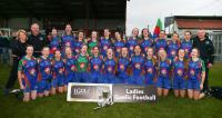 Murroe Boher All Ireland Junior Club Champions