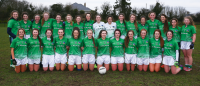 Limerick Under 16 County Panel 2015