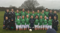 Limerick's Intermediate Team that overcame Antrim in the League
