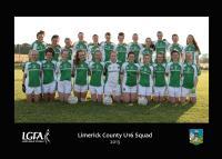 Limerick Under 16 Co Team 2013