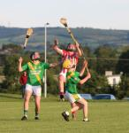Minor Action v Young Ireland's Gowran, Kilkennyh