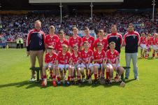 Primary Game v Waterford Hurling 2015