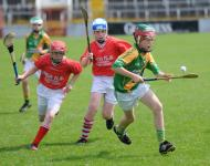 Sciath Hurling