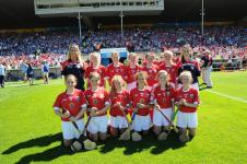 Primary Game Camogie V Waterford 2017