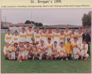 1995 County U14 Hurling Champions Bandon