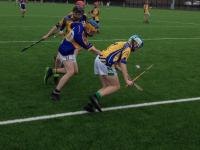 Hurling Action 2018