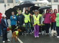 Walk for Guide Dogs for the Blind