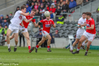 Cork vs Kildare . 03.02.2019. Photo Courtesy of Denis O' Flynn