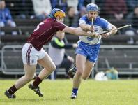 2015-03-29 National Hurling League Quarter Final v Galway in Walsh Park (Won)