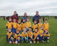 Knockmore U8B - Runners Up
