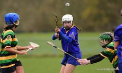 2016 U-15 Seandun Camogie Final victory over Glen Rovers