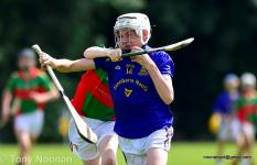 2018 Barrs at The Feile Na nGael