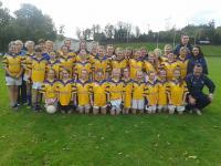 Kilshannig U12 North Cork Champions 2013 d