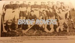 1933 Int Hurling team