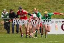 Harty Cup 2017