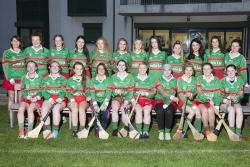 Adult Camogie Team