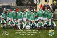 North Kerry Championship final 2017