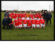 U13 Hurling League winners