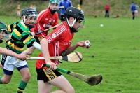 Watergrasshill U12s win inaugural Mon AG Tournament